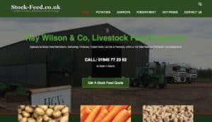 stock feed website
